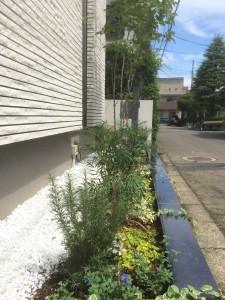 白玉石と御影笠石の間の植栽