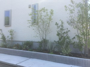 施工後表側花壇